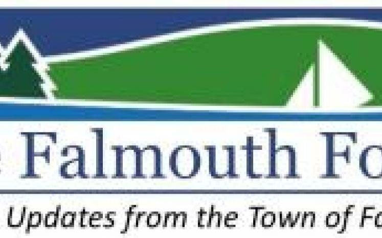 Falmouth Focus, Volume 2, Issue 15